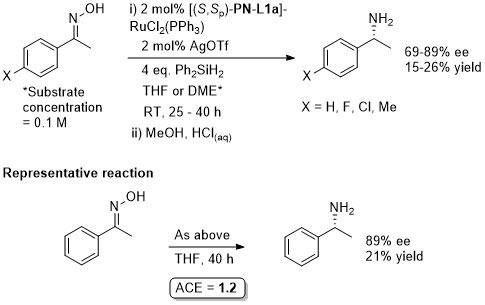 PN-L1a_b_Hydrosilylation_B