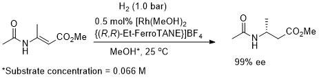 PP-FerroTane_CEJ02-8-5196